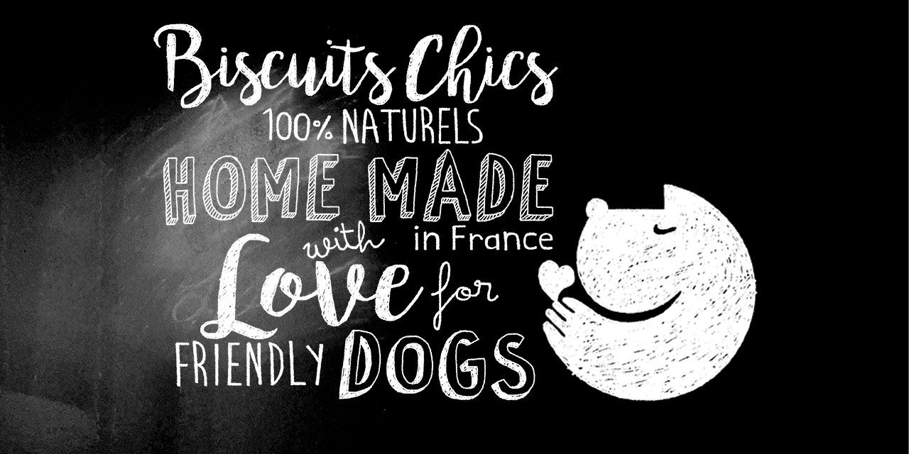 Biscuits chics pour chien